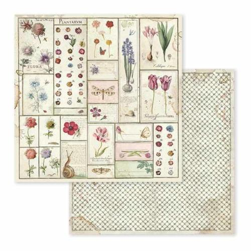 STAMPERIA - Collection SPRING BOTANIC - Herbarium papier 30x30